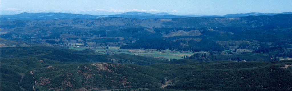 Greater Willapa Valley