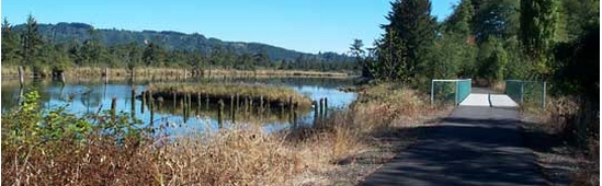 Willapa River Trail