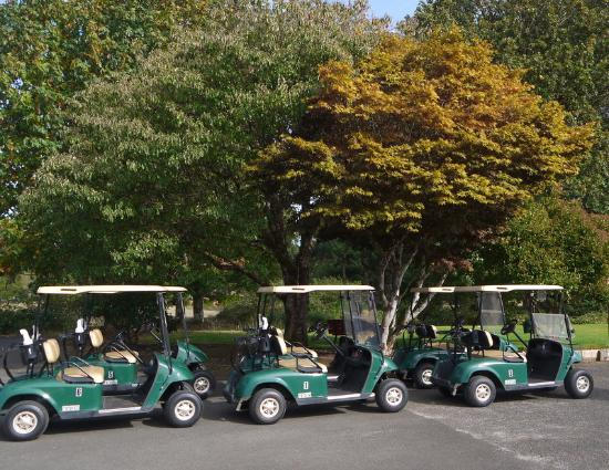 golf carts at raymond golf course